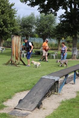 Hondenschool Leirekensdomein 20-06-2020 (32)