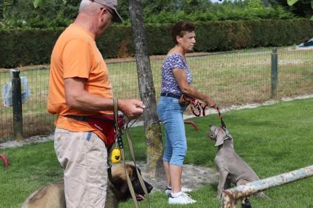 Hondenschool Leirekensdomein 20-06-2020 (7)