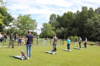 Hondenschool Leirekensdomein 20-06-2020 (75)