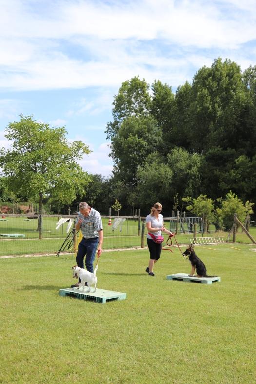 Hondenschool Leirekensdomein 20-06-2020 (81)