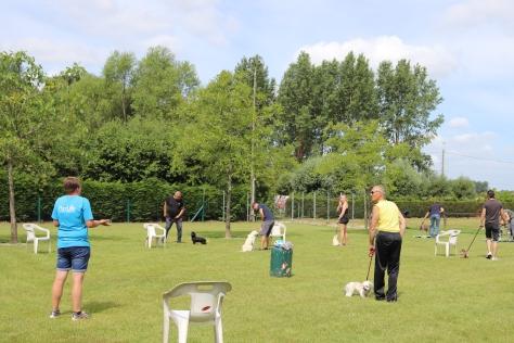 Hondenschool Leirekensdomein 20-06-2020 (89)